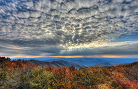 Cherohala Skyway by Ventures Birding Tours