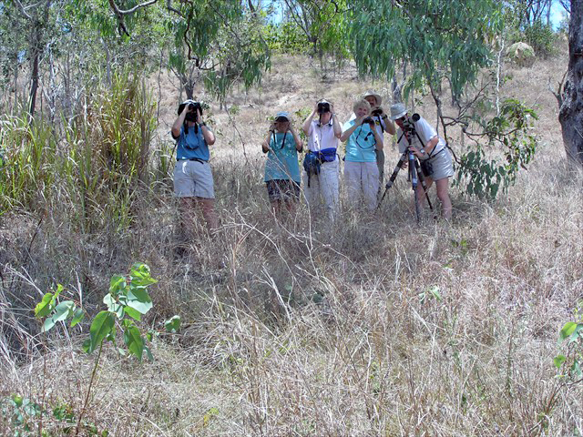 Birding in the Outback Photo by Ventures Birding