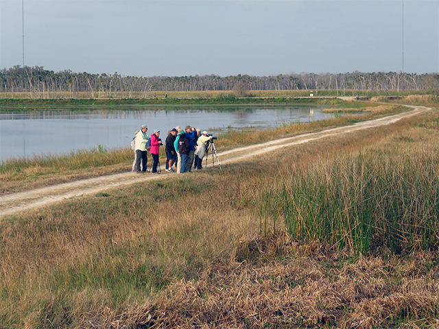 Birders at Orlando Wetlands Photo by Simon Thompson